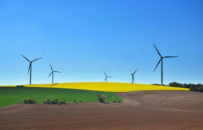Développement durable : Se former vers des métiers d'avenir